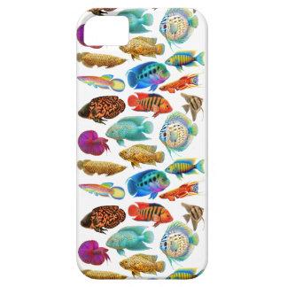 カラフルな熱帯アクアリウムの魚のiPhoneの箱 iPhone SE/5/5s ケース