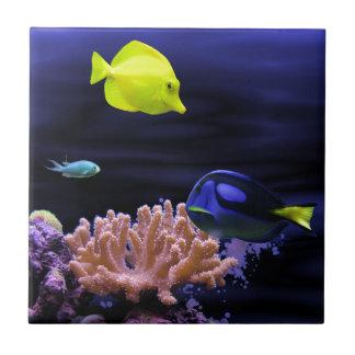 カラフルな熱帯魚 タイル