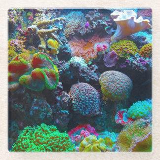 カラフルな珊瑚 ガラスコースター