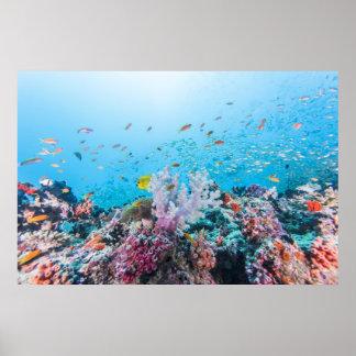 カラフルな礁および珊瑚とのスキューバダイビング プリント