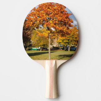 カラフルな秋の木 卓球ラケット