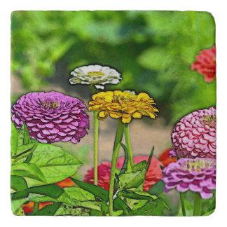 カラフルな《植物》百日草Trivet トリベット