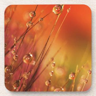 カラフルの自然葉の水低下 コースター