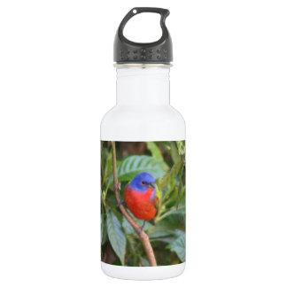 カラフルの色彩の鮮やかな旗布の鳥 ウォーターボトル