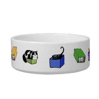 カラフル箱のペットボウルの猫 ボウル