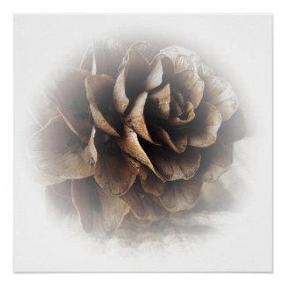 カラマツの円錐形ポスター ポスター