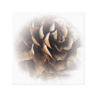 カラマツの円錐形 キャンバスプリント