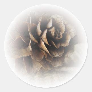 カラマツの円錐形 ラウンドシール