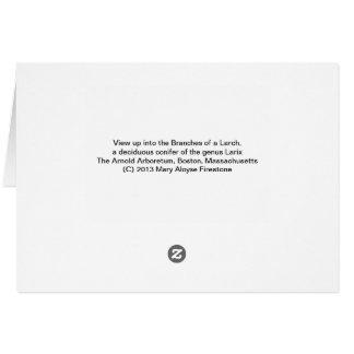 カラマツ木 カード