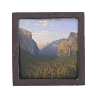 カリフォルニアのヨセミテ国立公園、ヨセミテ ギフトボックス