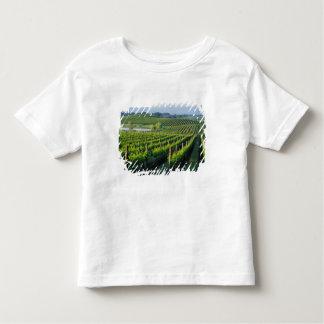 カリフォルニアのNapaの端正な列のデマ トドラーTシャツ