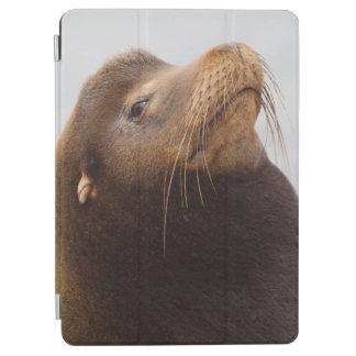 カリフォルニアアシカ iPad AIR カバー
