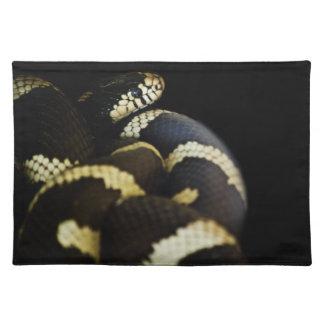 カリフォルニアキングヘビ属ランチョンマット ランチョンマット
