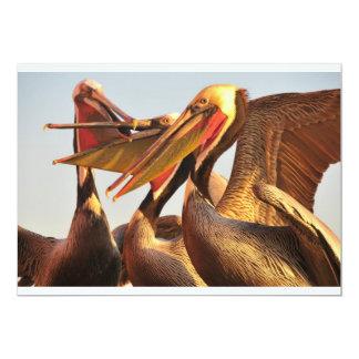 カリフォルニアブラウンペリカン カード