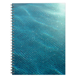 カリフォルニアプール ノートブック