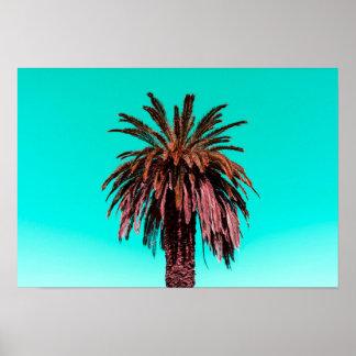 カリフォルニアヤシの木 プリント