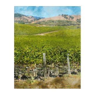 カリフォルニアワインのブドウ園 アクリルウォールアート