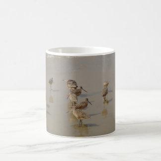 カリフォルニア浜鳥 コーヒーマグカップ