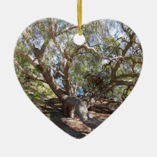 カリフォルニア海岸の未確認の木 セラミックオーナメント