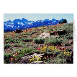 カリフォルニア、シエラネバダ山脈山1 カード