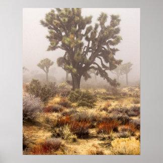 カリフォルニア: ジョシュアツリーの国有記念物、 ポスター