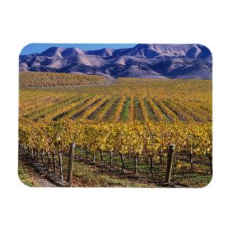 カリフォルニア、San Luis Obispo郡のEdnaの谷 マグネット