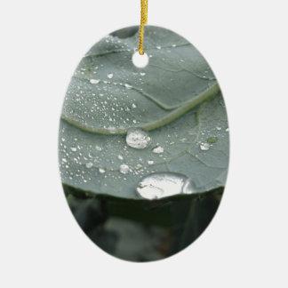 カリフラワーの葉の雨滴 セラミックオーナメント