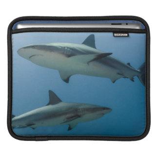 カリブのな礁の鮫 iPadスリーブ