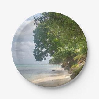 カリブのビーチのプレート ペーパープレート