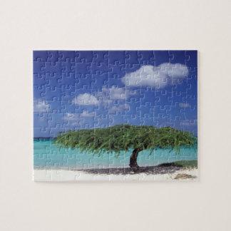 カリブ、アルバ。 ワシのビーチ ジグソーパズル