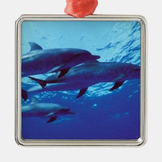 カリブ、バハマはイルカに斑点を付けました メタルオーナメント