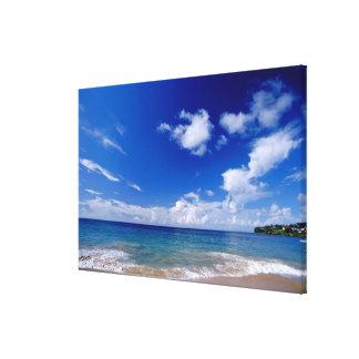 カリブ、小アンティル諸島、西インド諸島、 キャンバスプリント