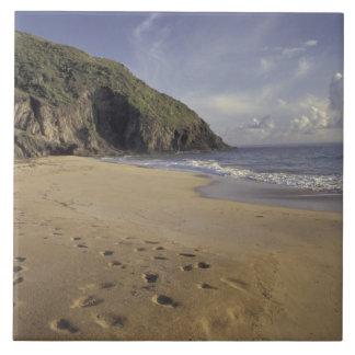 カリブ、St. Kitts。 大西洋の足跡 タイル