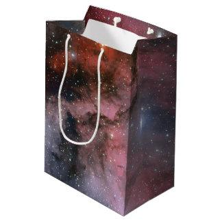 カリーナの星雲、オオカミRayetの星WR 22 ミディアムペーパーバッグ