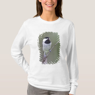 カロライナ《鳥》アメリカゴガラの歌うこと Tシャツ