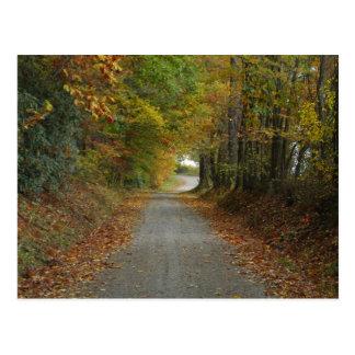 カロライナBackroads ポストカード
