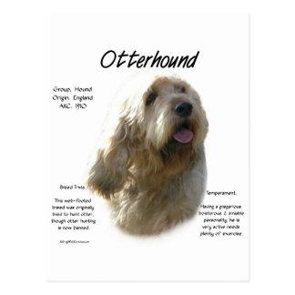 カワウソ猟犬の歴史のデザイン ポストカード