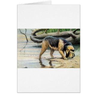 カワウソ猟犬 カード