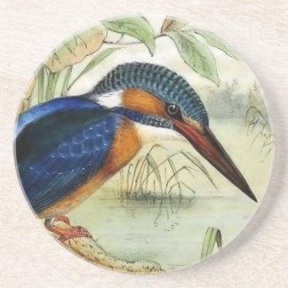 カワセミのヴィンテージの鳥のイラストレーション コースター