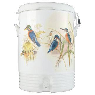 カワセミの鳥の野性生物動物の池 ドリンククーラー
