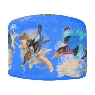 カワセミの鳥動物の野性生物のPoufの枕 プーフ