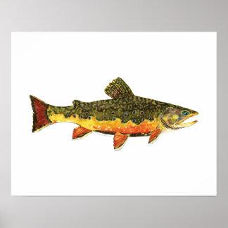 カワマスの魚の絵画 ポスター