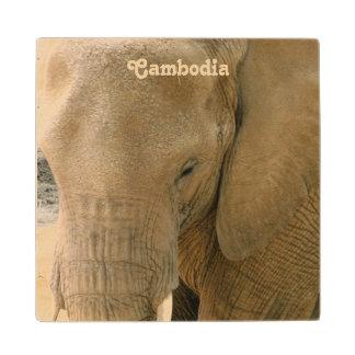 カンボジア象 ウッドコースター