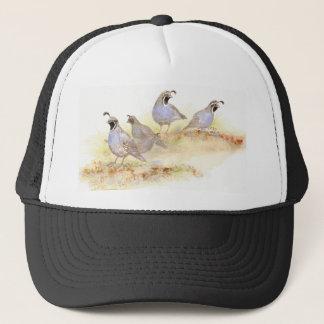 カンムリウズラ、鳥、自然、野性生物、 キャップ