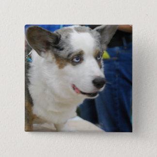 カーディガンのウェルシュコーギー犬ボタン 缶バッジ