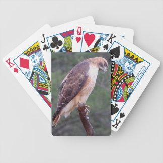 カードを遊ぶタカ バイスクルトランプ