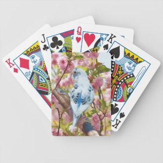 カードを遊ぶ桜の青いインコ バイスクルトランプ