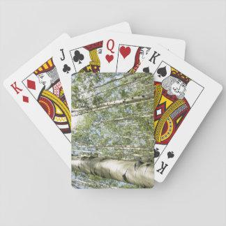カードを遊ぶ森林の美しい日 トランプ