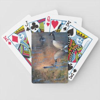 カードを遊んでいるカナダのガチョウの野性生物 バイスクルトランプ