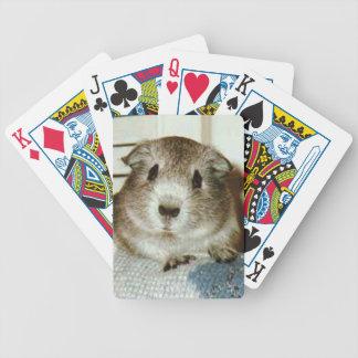 カードを遊んでいるモルモット バイスクルトランプ